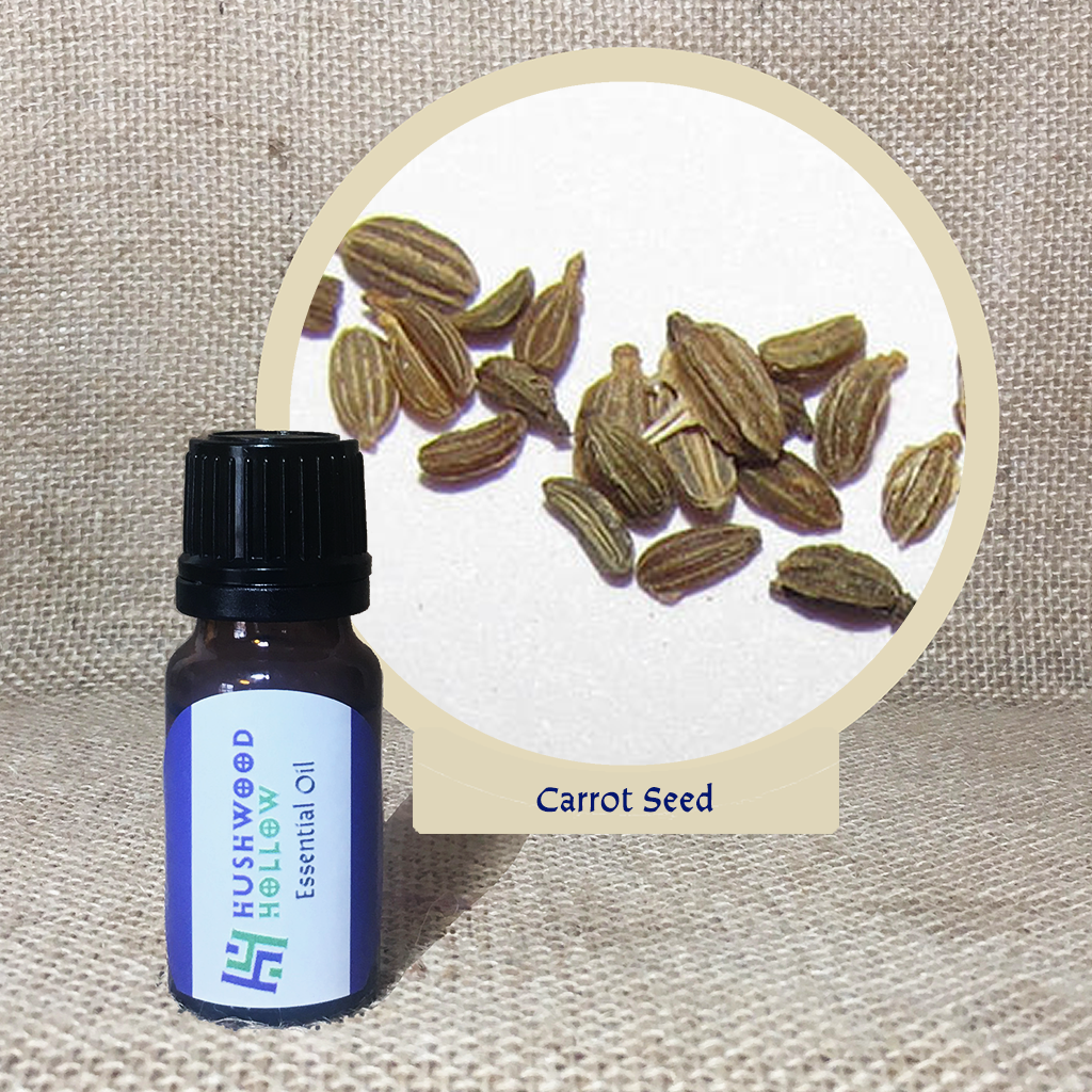 Carrot Seed 5% – Pure Therapeutic Grade Essential Oil via @chooicenz