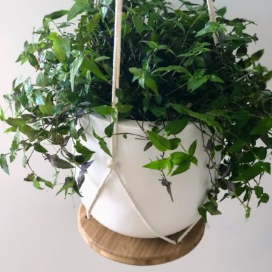 Macrame Plant Hanger with Small Pot