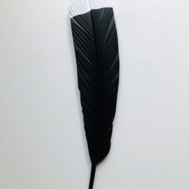 carved+huia+feather